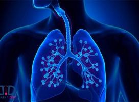 پاک سازی ریه با روش های طبیعی!