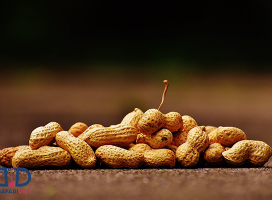 عجیب ترین خواص بادام زمینی در لاغری و سلامتی!