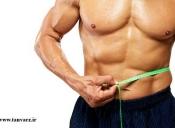 مواد موثر در افزايش وزن