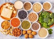 بهترین منابع پروتئین گیاهی برای گیاه خوارها